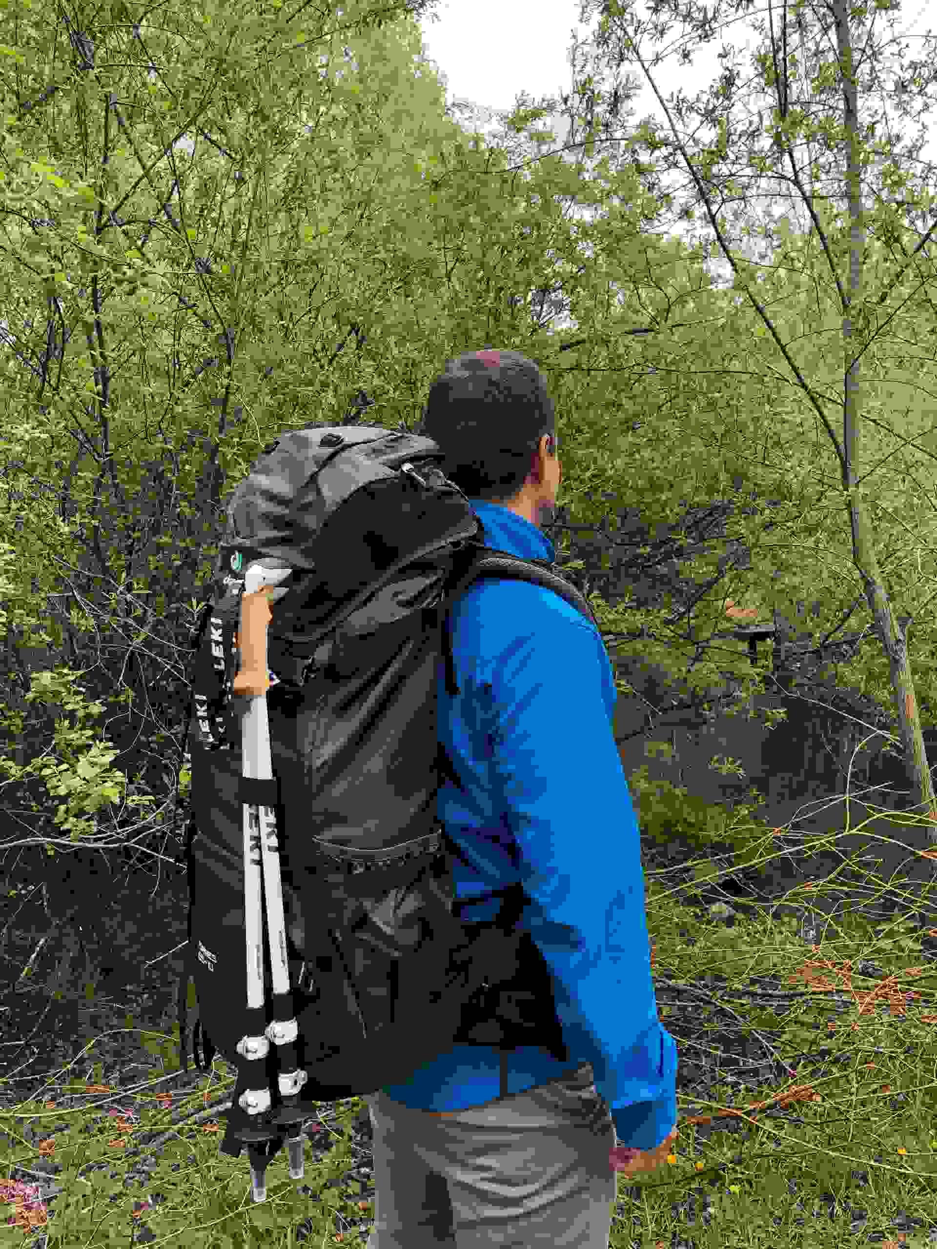 Deuter Trekkingrucksack TORRES 65+10