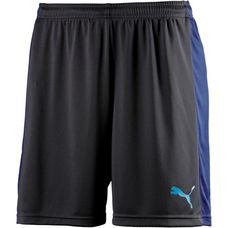 PUMA evo TRG Fußballshorts Herren Puma New Navy-Blue Depths-Atomic Blue