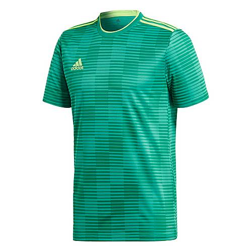 adidas t shirt herren green