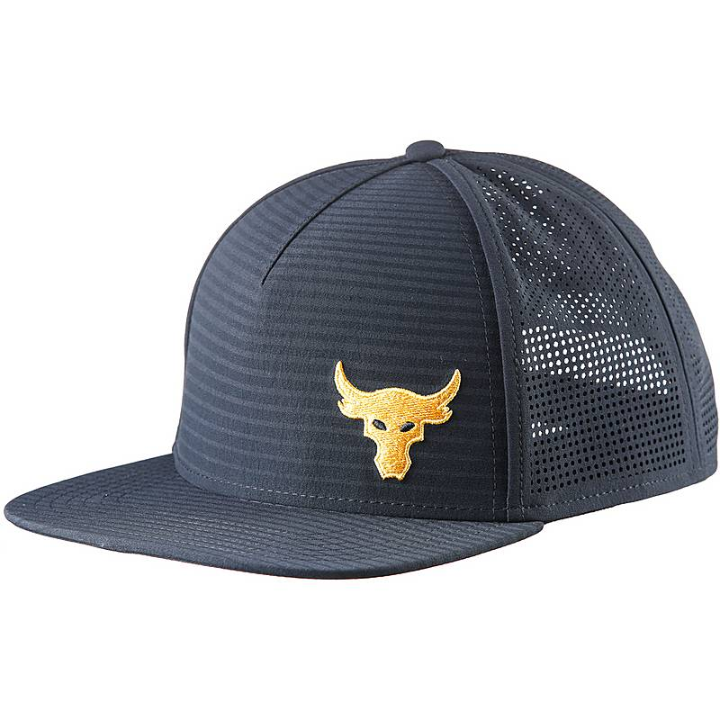 64ab4e309 hot the rock under armour hat e8335 eba57