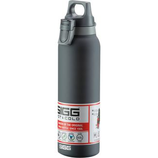 SIGG Hot & Cold Isolierflasche shade