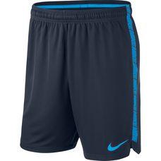 Nike Squad Fußballshorts Herren obsidian-blue hero-blue hero