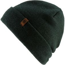 Element Carrier II Beanie dark spruce heather