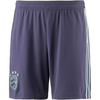 adidas FC Bayern 18/19 Auswärts Fußballshorts Herren trace purple