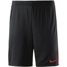 Nike Academy Fußballshorts Herren black-lt crimson-lt crimson
