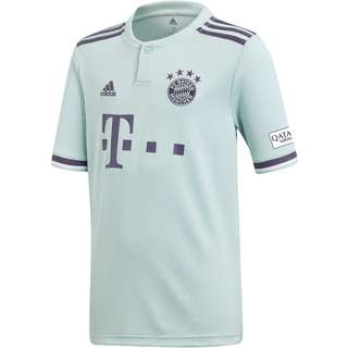 adidas FC Bayern 18/19 Auswärts Trikot Kinder ash green