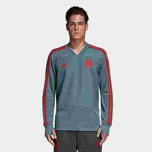 adidas FC Bayern München Trainingsoberteil Sweatshirt Herren Raw Green / Red