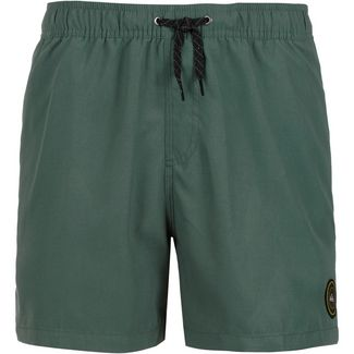 Quiksilver Everyday Volley 15 Badeshorts Herren garden topiary