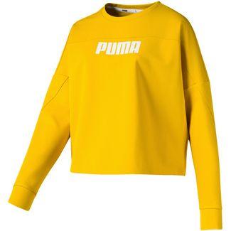 PUMA Nu Tility Sweatshirt Damen sulphur