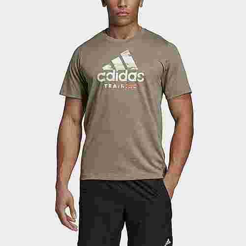 adidas FreeLift 360 Graphic Logo T-Shirt T-Shirt Herren Raw Khaki