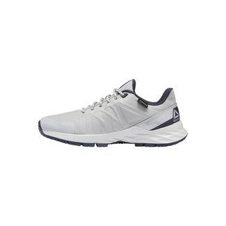 Reebok Astroride Trail GTX 2.0 Shoes Fitnessschuhe Damen Grey / Porcelain / Navy