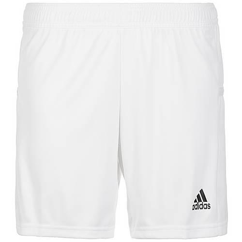 adidas Team 19 Knitted Fußballshorts Damen weiß im Online Shop von SportScheck kaufen