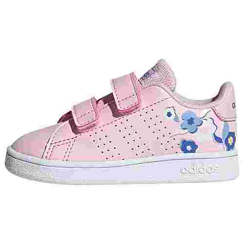 adidas Advantage Schuh Sneaker Kinder Clear Pink / Clear Pink / Real Blue