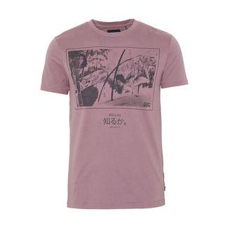 Chiemsee T-Shirt T-Shirt Herren Flint