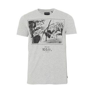 Chiemsee T-Shirt T-Shirt Herren Light Grey M