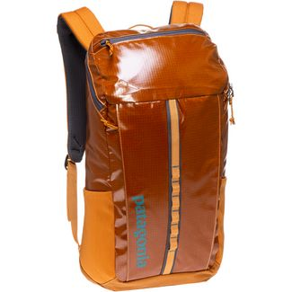 Patagonia Rucksack Black Hole Pack 25L Daypack hammonds gold