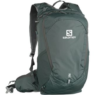 Salomon Trailblazer 20 Daypack urban chic-alloy