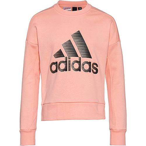 adidas Pullover für Mädchen Online Kaufen   FASHIOLA.at
