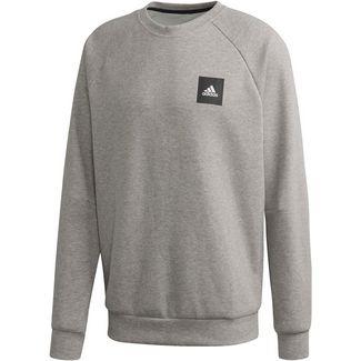 Sweatshirts für Herren von adidas in grau im Online Shop von