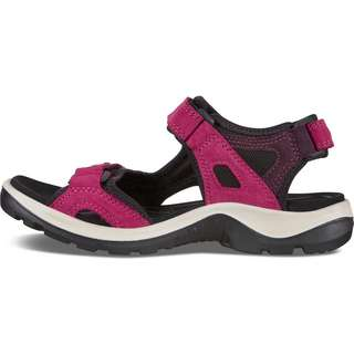 ECCO Offroad Outdoorsandalen Damen sangria-fig