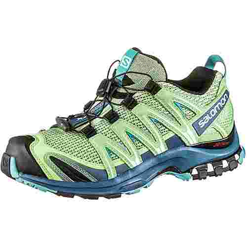 Salomon XA Pro 3D Multifunktionsschuhe Damen spruce stone-indian teal-meadowbroo