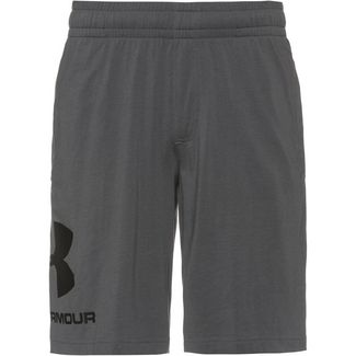 Under Armour Big Logo Funktionsshorts Herren grey