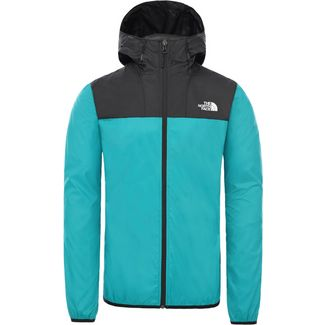 The North Face Cyclone Wanderjacke Herren tnf black/fanfare green