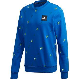 adidas GFX Sweatshirt Herren blue