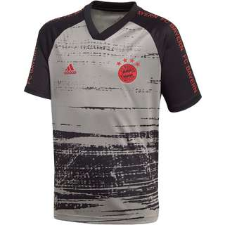 adidas FC Bayern Premtach Funktionsshirt Kinder dove grey