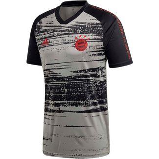 adidas FC Bayern Prematch Funktionsshirt Herren dove grey