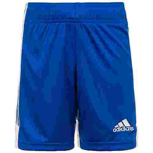 adidas Tastigo 19 Fußballshorts Herren blau / weiß