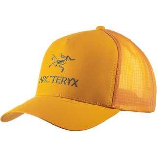 Arcteryx Logo Cap quantum