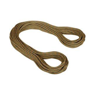 Mammut 9.9 Gym Workhorse Classic Rope Kletterseil boa Classic Standard