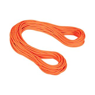 Mammut 9.5 Alpine Dry Rope Kletterseil safety orange-zen Dry Standard