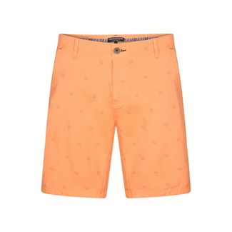 Colours & Sons Print CHANNING Shorts Herren pineapple-camels
