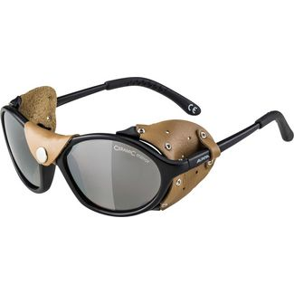 ALPINA SIBIRIA Sportbrille black-brown