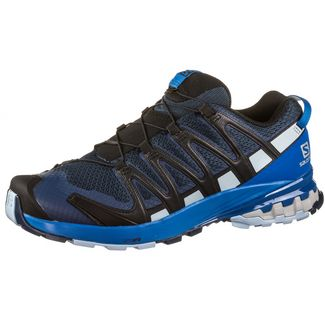 Salomon XA PRO 3D v8 Multifunktionsschuhe Herren sargasso sea-imperial blue-angel fa
