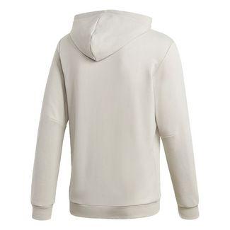 adidas Five Ten GFX Hoodie Sweatshirt Herren Grau