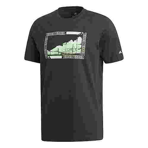 adidas TERREX Graphic T-Shirt T-Shirt Herren Schwarz