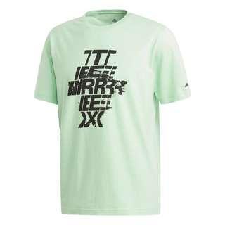 adidas TERREX Graphic Logo T-Shirt T-Shirt Herren Grün