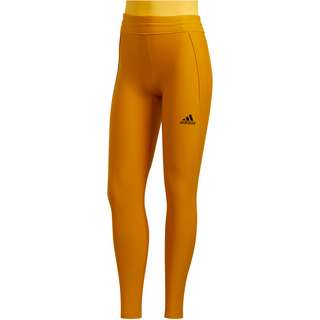 adidas Alphaskin Cold.Ready Tights Damen legacy gold
