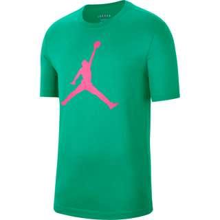 Nike Jumpman Fill T-Shirt Herren neptune green-watermelon
