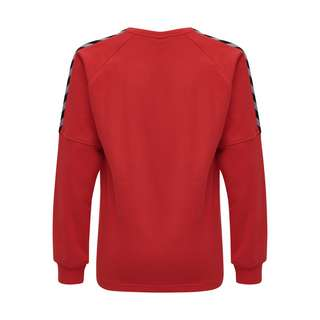 hummel hmlAUTHENTIC KIDS TRAINING SWEAT Sweatshirt Herren TRUE RED