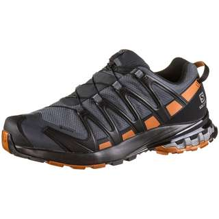 Salomon GTX® XA PRO 3D v8 Multifunktionsschuhe Herren ebony-caramel cafe-black