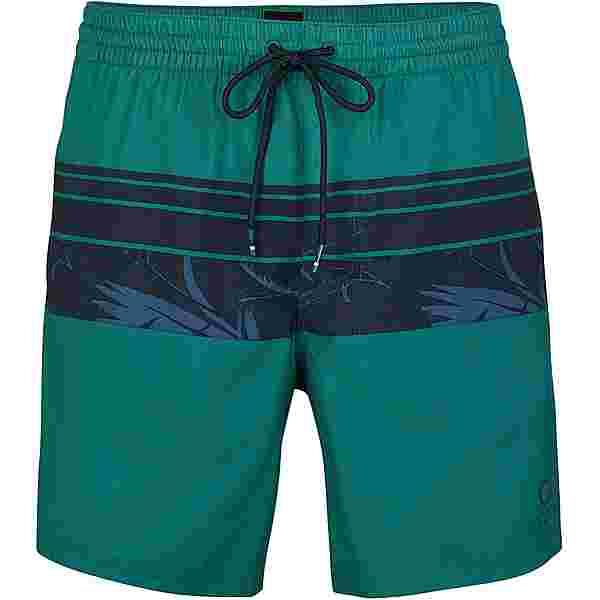 O'NEILL Cali Stripe Badeshorts Herren green aop w-blue