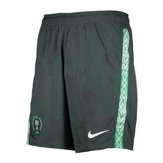 Nike Fußballshorts gruenweiss