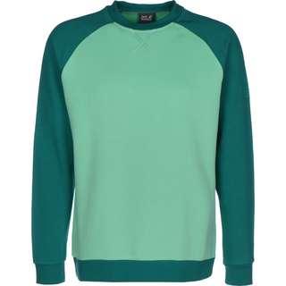 Jack Wolfskin 365 Crew Sweatshirt Herren grün