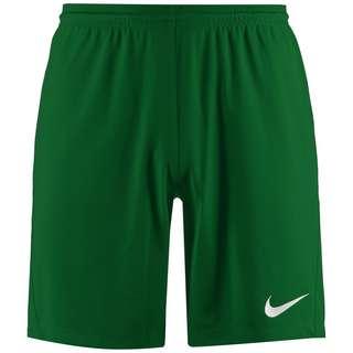 Nike Dry Park III Fußballshorts Herren grün / weiß