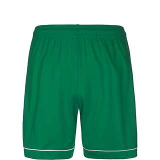 adidas Squadra 17 Fußballshorts Kinder grün / weiß
