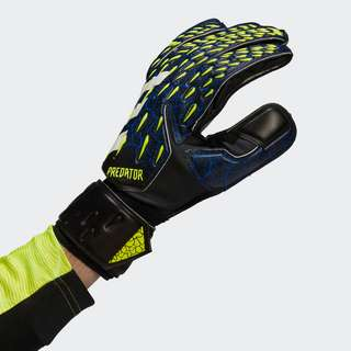 adidas Predator Match Torwarthandschuhe Torwarthandschuhe Herren Black / Royal Blue / Solar Yellow / White